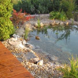 Nice pond 2 300