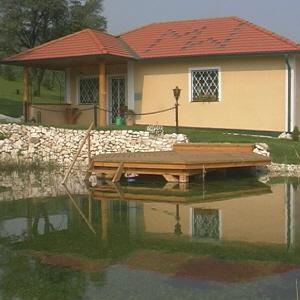Pond 2 300.jpg
